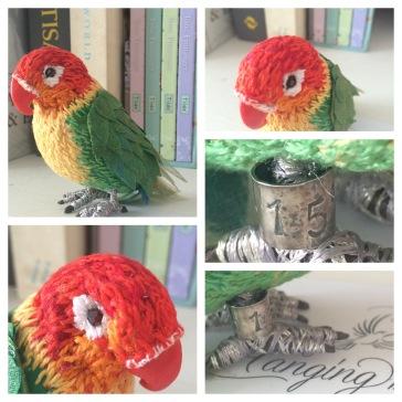 fabric textile bird material 3d lovebird